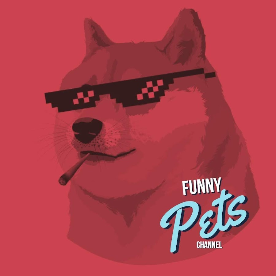 Channel FUNNY PETS