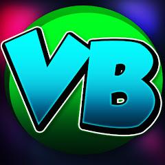 VBGAMING11 Net Worth