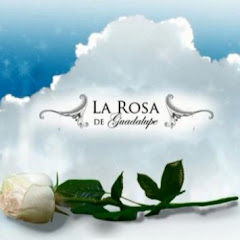 Cuanto Gana La Rosa de Guadalupe