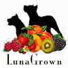 LunaGrown Jam