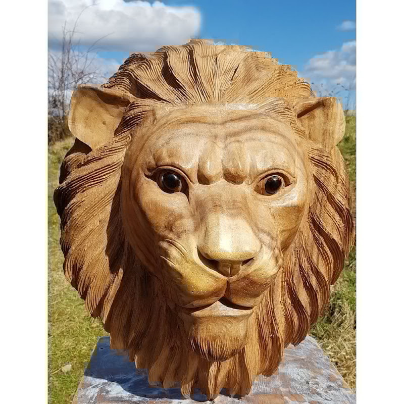 Solid Lion
