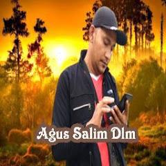 Agus Salim Dlm