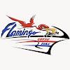 FlamingoCorseBike