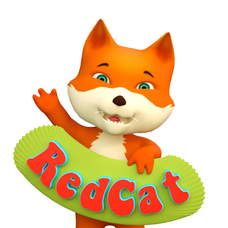 Red Cat - Animals For Kids