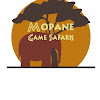 Mopane Safaris