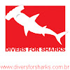 Divers for Sharks