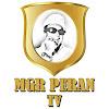MGR Peran TV