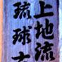 Uechi ryu Karate do