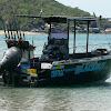 Blackout Sportsfishing Cairns