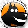 Big Inja - The Digital Data Dog