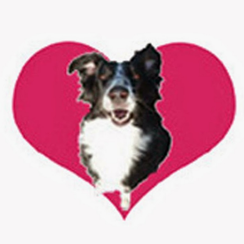 Love Wags A Tail