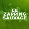Zapping Sauvage