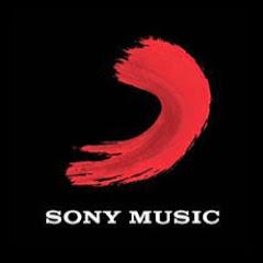 Sony Music South Net Worth