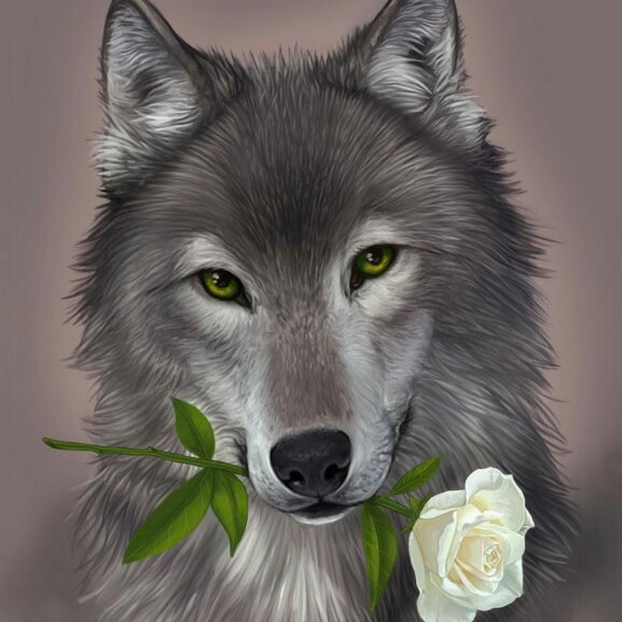 Тренинга психологического, волк открытка