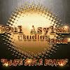 The Soul Asylum Studios Group LLC