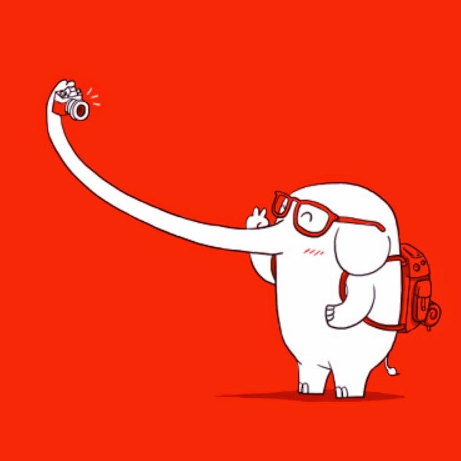 Днем, картинка прикольная слона в наушниках