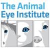 Animal Eye Institute