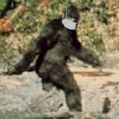 Just Some Bigfoot With Internet Access