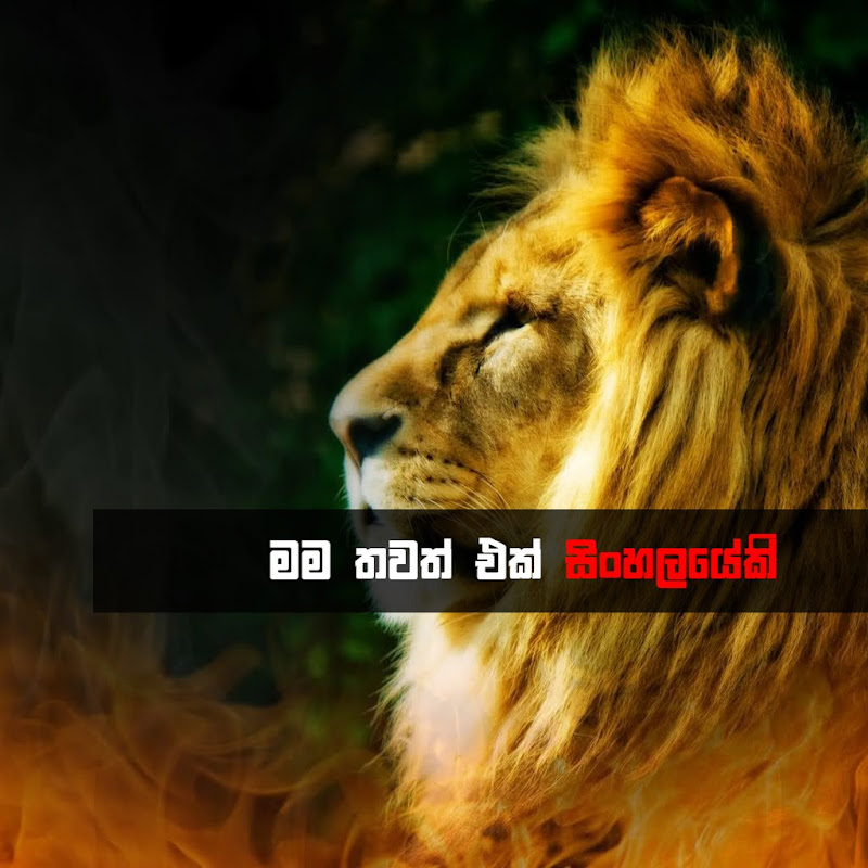 Lanka Defence (discover)