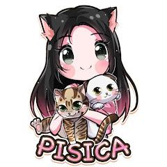 Pisica MiauMiau
