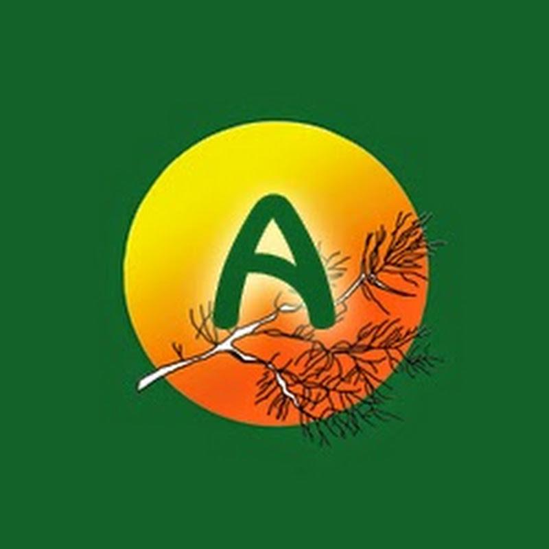 Anasztázia