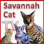SavannahCatTV