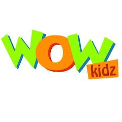 Wow Kidz Net Worth