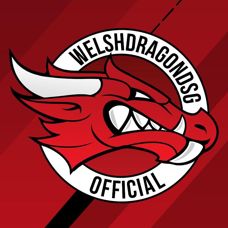 WelshDragonDSG
