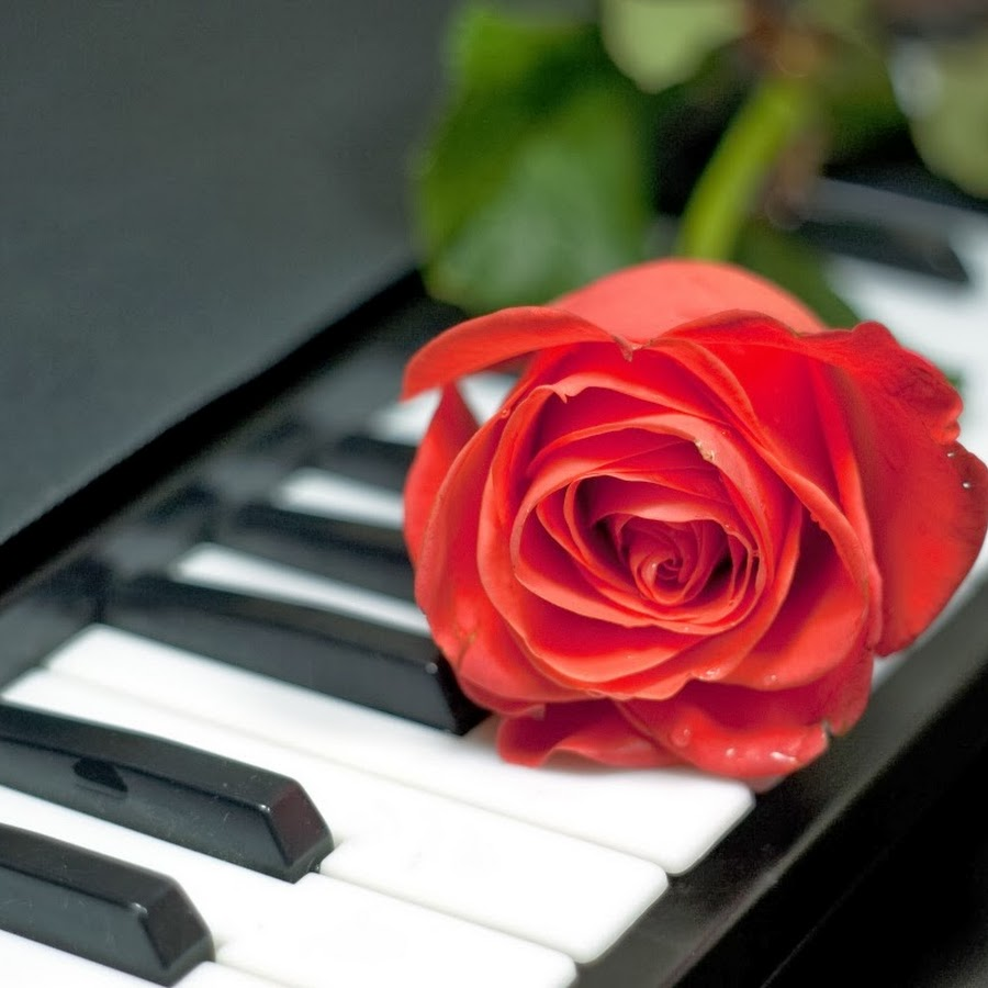 Картинки смешные, открытка с клавишами рояля