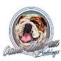 oasis de paz bulldog