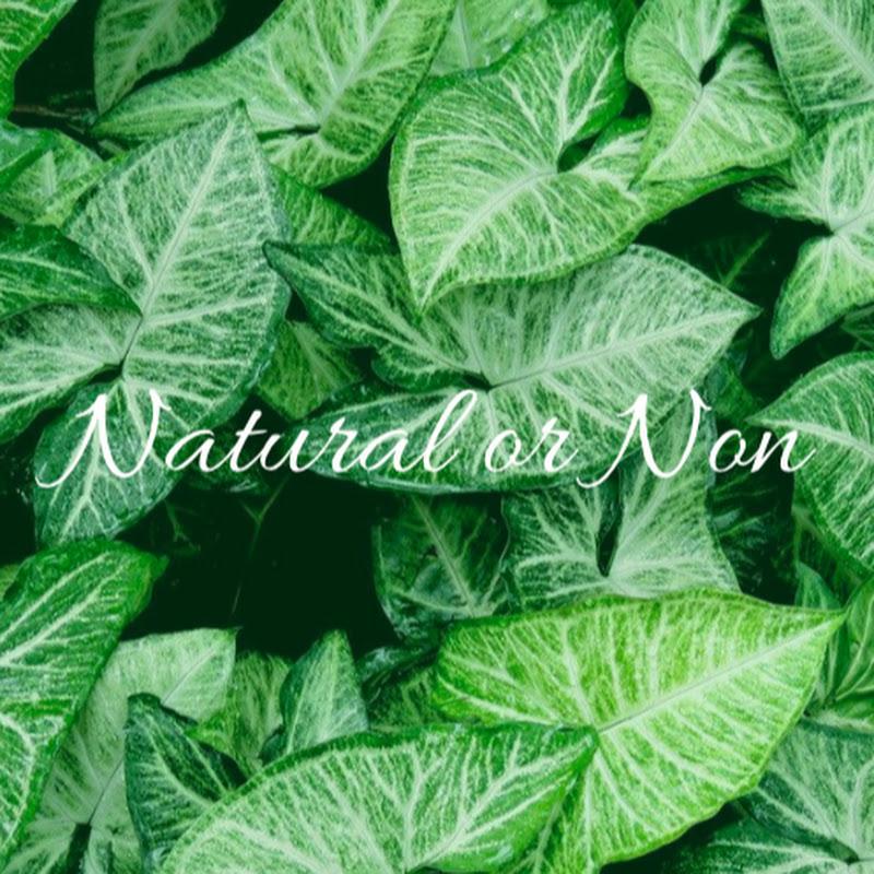 Natural or Non (natural-or-non)