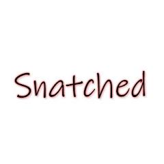 Snatched Net Worth