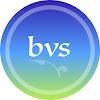 Blue Vine Solutions, LLC