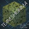 Team Shiginima