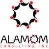 Alamom Consulting, Inc. Security & Safety Solutions