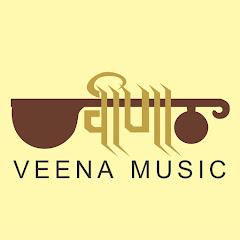 Veena Music Net Worth