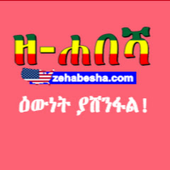 Zehabesha Official Net Worth