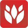 Red Garden Ewa Madejska