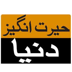 Urdu Amazing World Net Worth