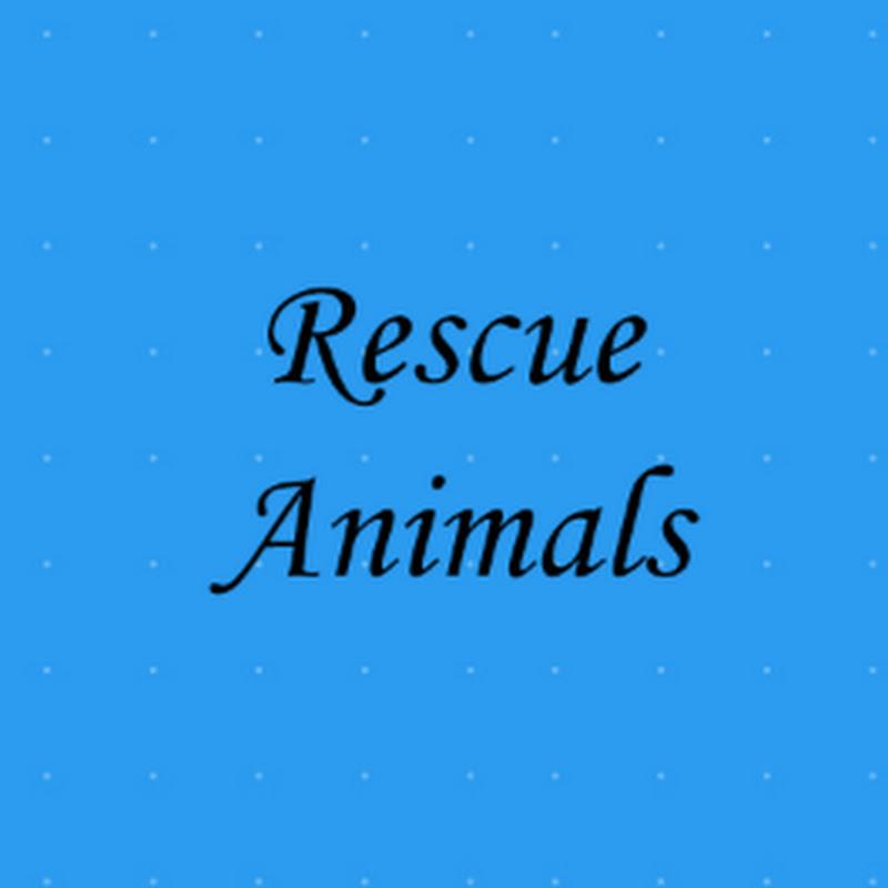 Rescue Animals