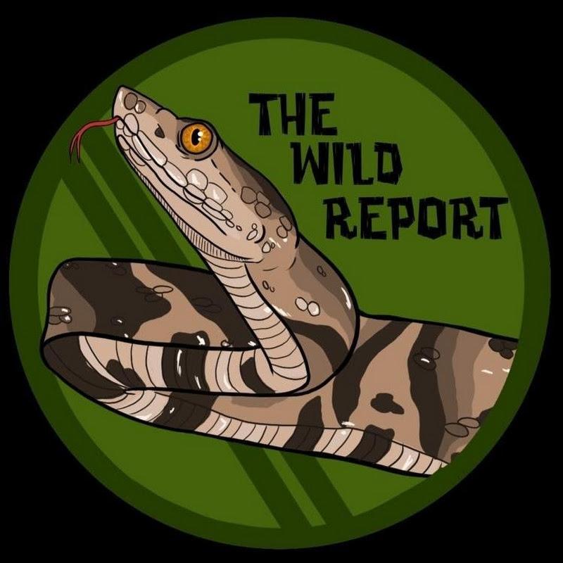 The Wild Report (the-wild-report)
