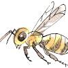 Seaside Bees