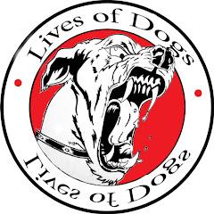 Lives of dogs تدريب كلاب Net Worth