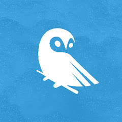 Puffy Owl