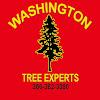 Washington Tree Experts, LLC
