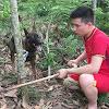 Love Animal World