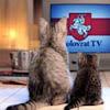 Kolovrat TV