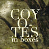 Coyotes in Boxes
