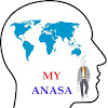 Anasa Traveller