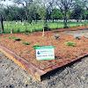 Rapid Lawn Landscape Solutions Ltd.